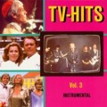 TV-Hits Instrumental Vol.3