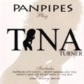 Panpipes play TINA TURNER